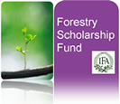 Forestry Scholarship Fund